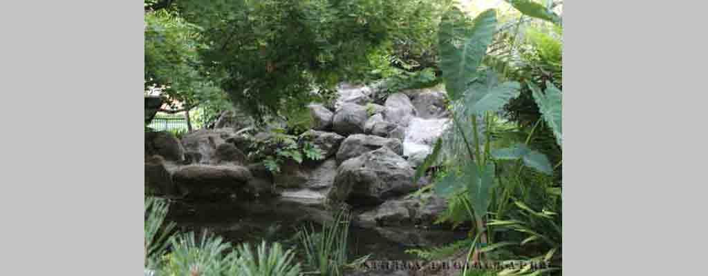 Capital-Park-Pond
