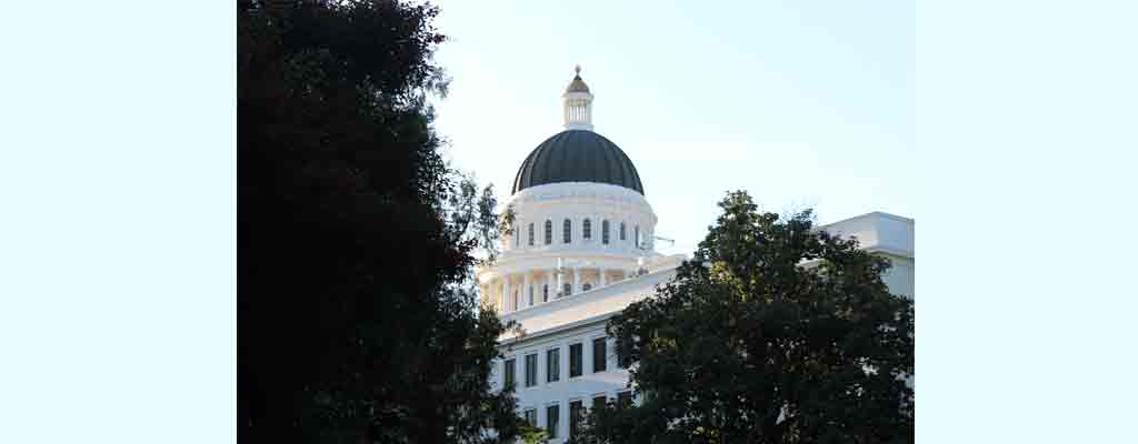 Trees_Framing_Sacramento_Capital_Dome