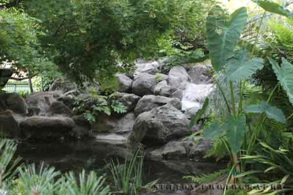 Sacramento-Capital-Park-Pond