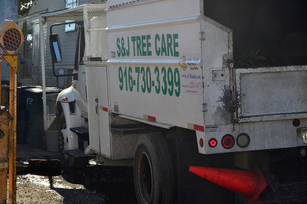 s&j-tree-care-removal-truck