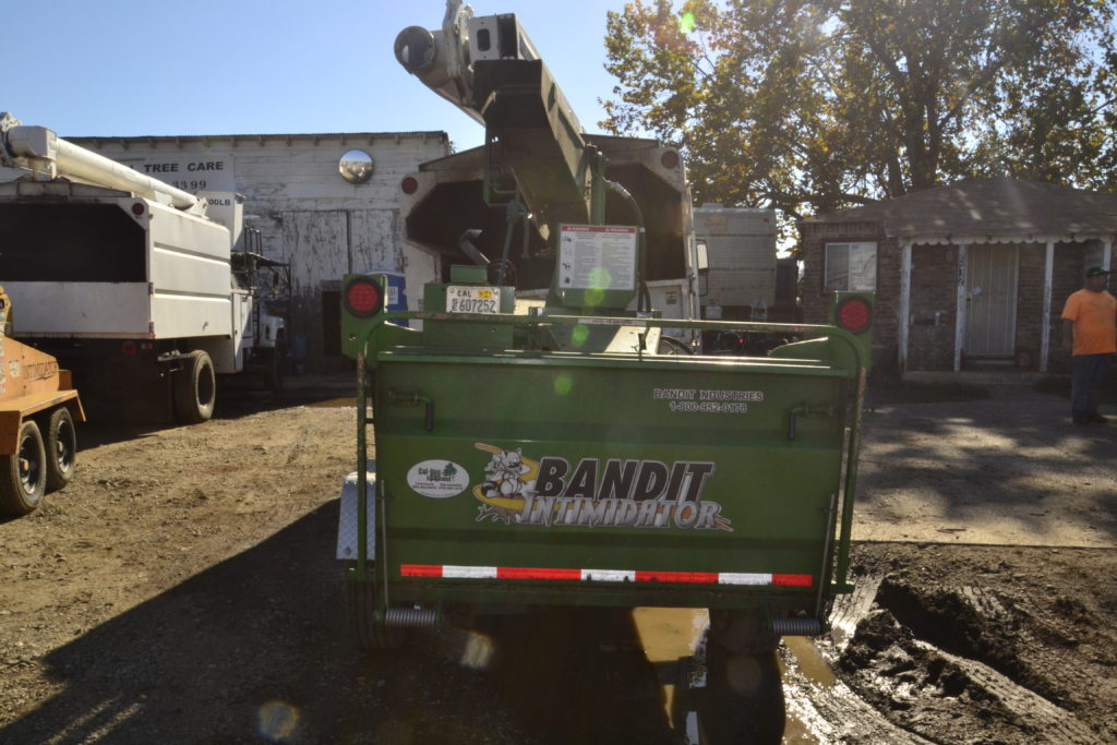 Tree Removal Folsom